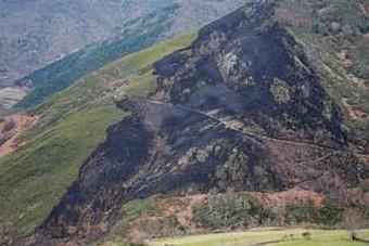 Imaxe de parte da zona calcinada polo incendio rexistrado onte. Autora da imaxe: Fernanda Follana