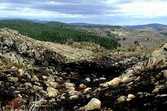 Aspecto que presentaban onte algúns montes queimados en Prado da Limia (Muíños, Ourense). Pablo Araújo
