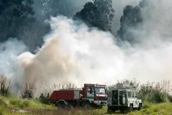 Servizos de bombeiros sufocan o incendio. Fran Martínez