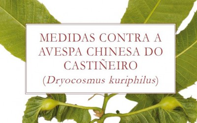 MEDIDAS CONTRA A AVESPA CHINESA DO CASTIÑEIRO (Dryocosmus kuriphilus)