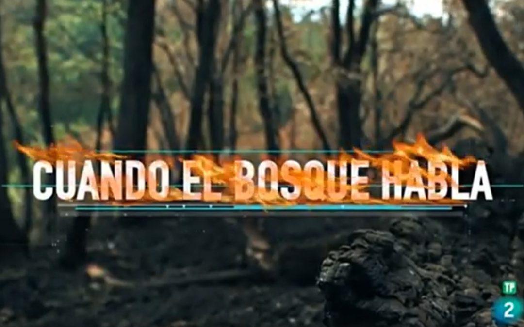 #AxentesAmbientais @Xunta dos distritos XVI e XIX – Cuando el bosque habla – Reduce tu huella