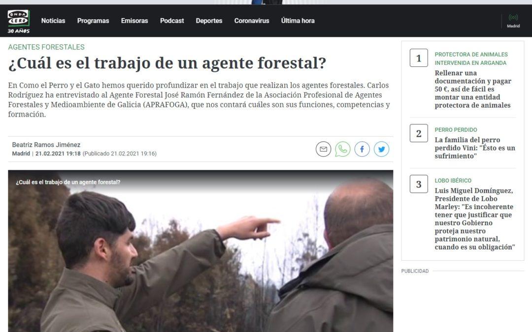 ¿Cal é o traballo dun axente forestal?